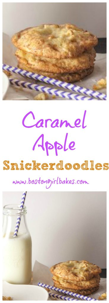 snickerdoodles collage