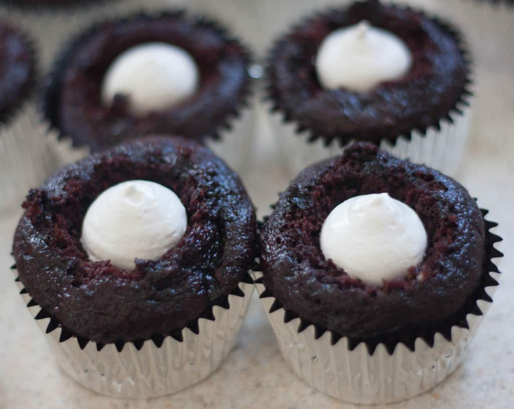 chocolate cupcakes cored and filled with marshmallow fluff