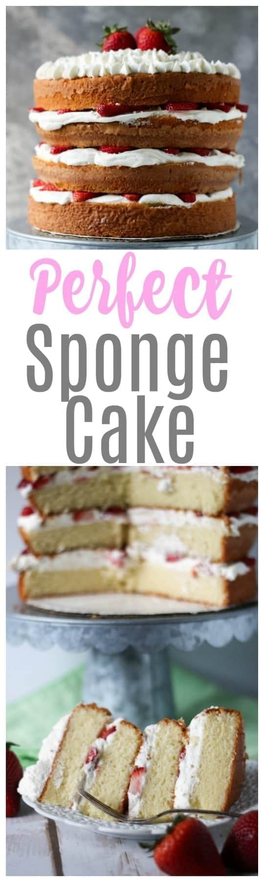 This 4 layer perfect sponge cake is going to be a major showstopper at your next event! Layer this cake with whipped cream and strawberries for the ultimate strawberry shortcake!