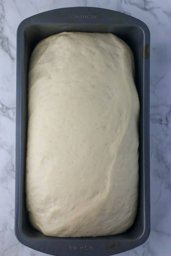 dough shaped into a loaf pan