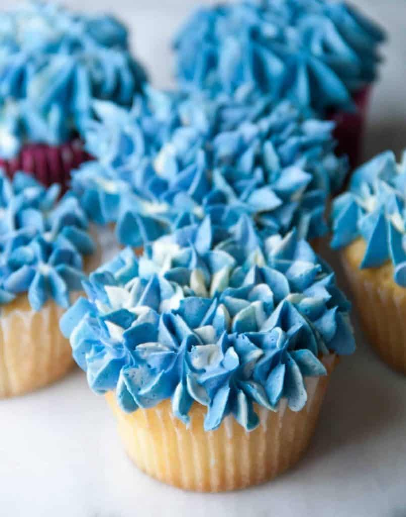 hydrangea flower buttercream decorated cupcakes