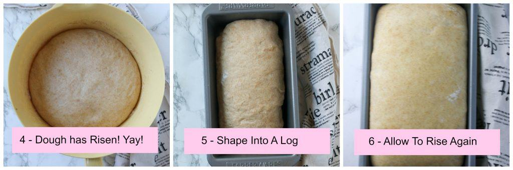 bread dough in a bowl and then in a loaf pan