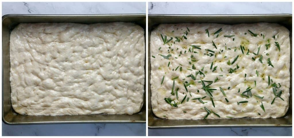 focaccia dough in pan dimpled and topped with fresh rosemary