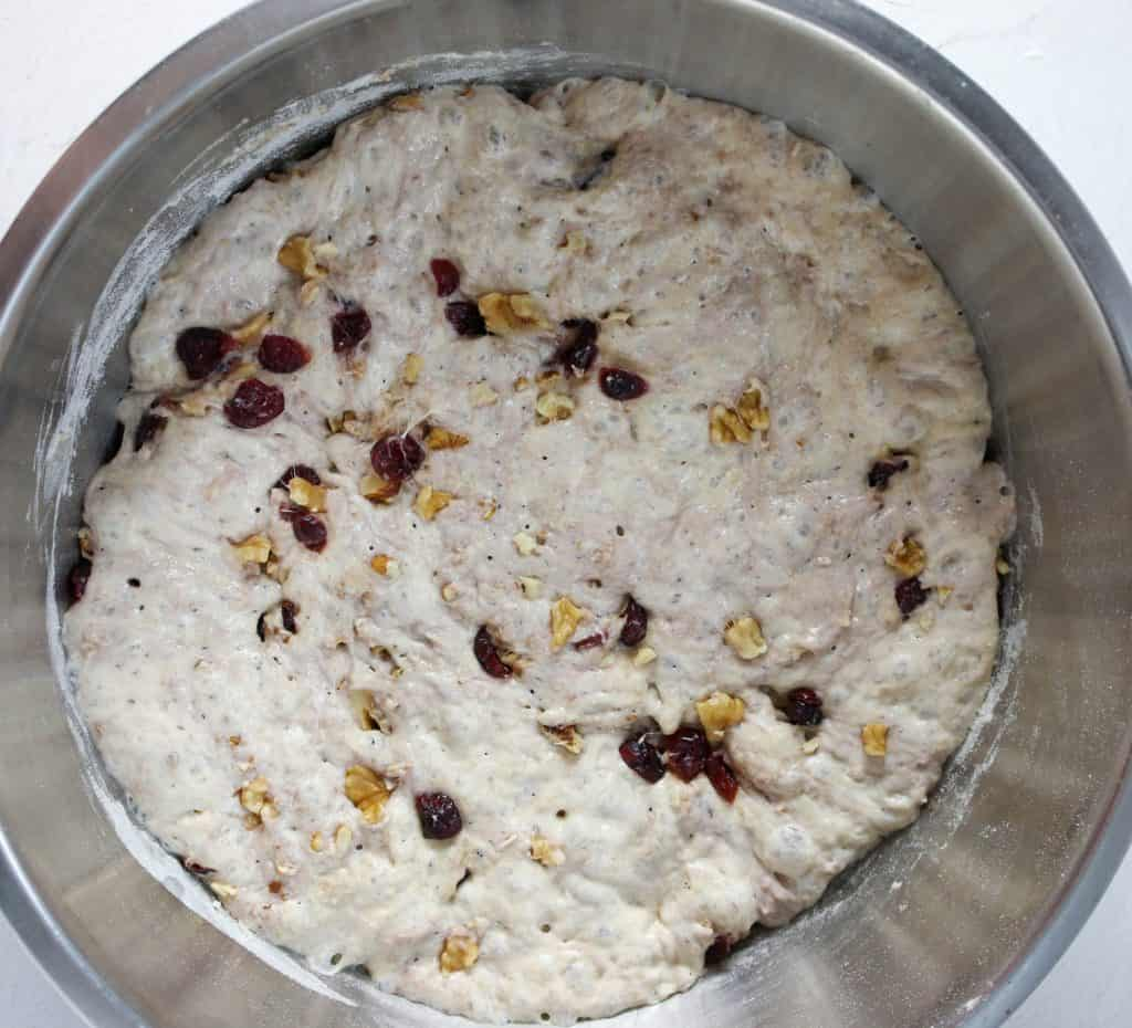 no knead cranberry walnut bread dough having fully risen in a metal bowl