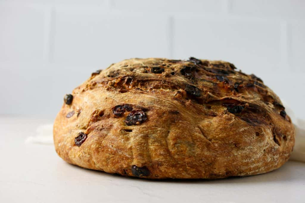 side view of a whole no knead cranberry pecan bread