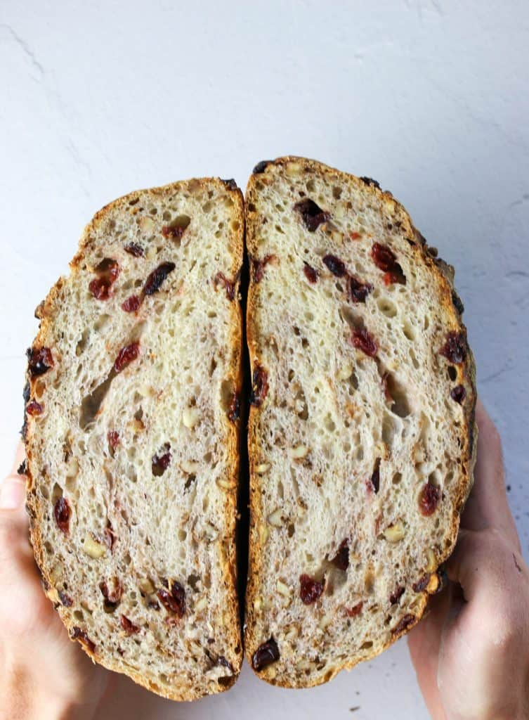 hands holding a no knead cranberry walnut loaf cut in half