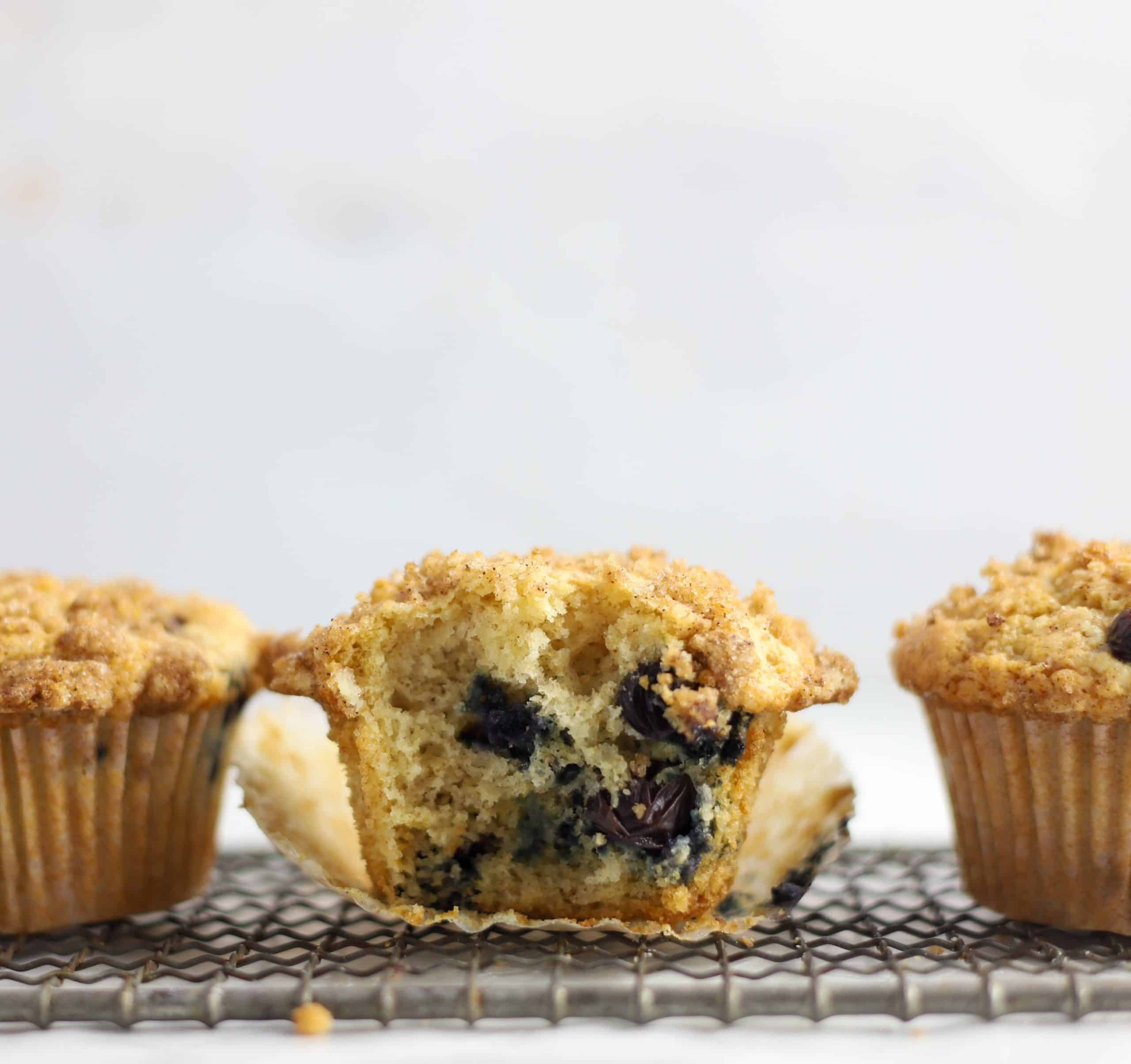 sourdough blueberry muffin with a bite taken out of it