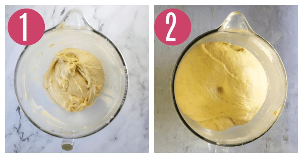 babka dough before and after rising